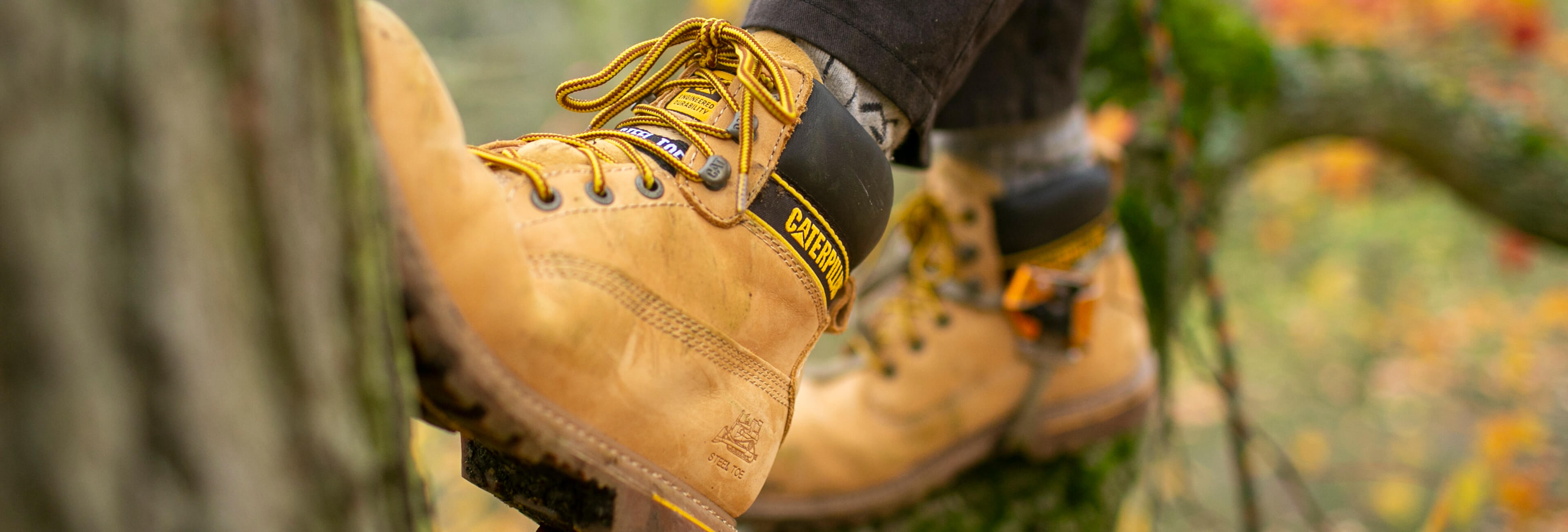 CAT Footwear Fairbanks