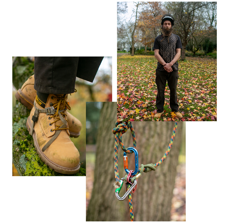 Alex The Tree Surgeon Collage