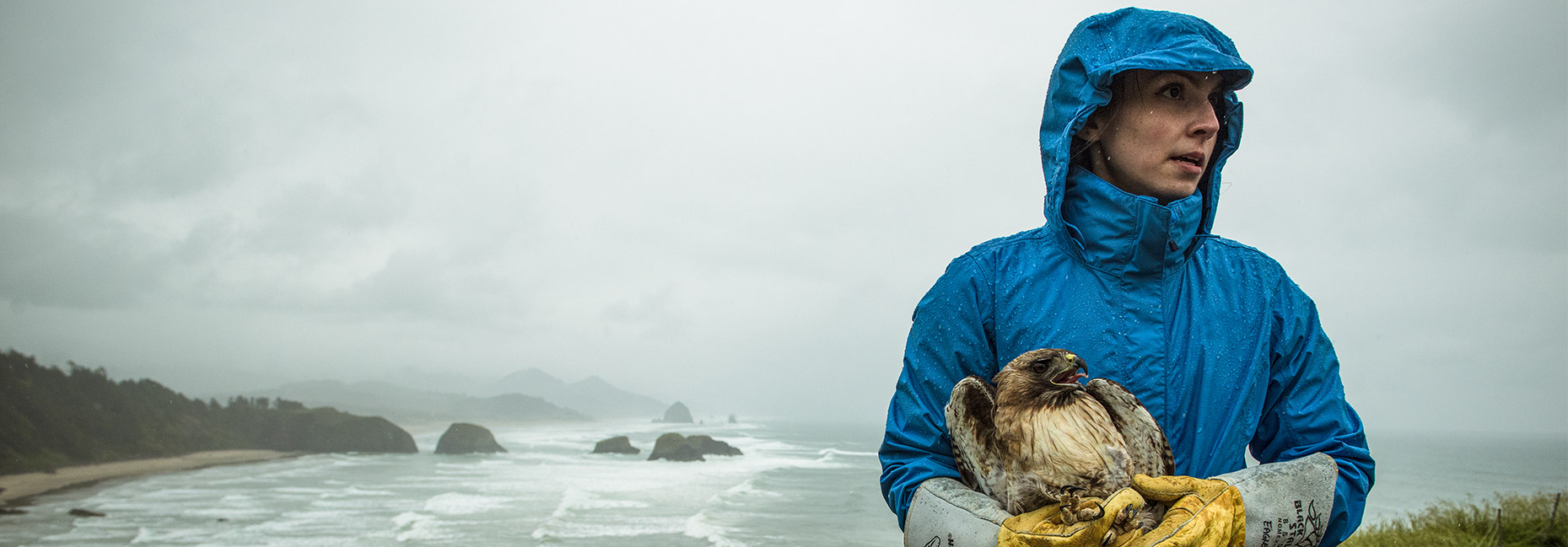 Woman in blue raincoat holding a halk in her arms, in front of a rocky coastline.